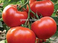 Рассада помидор Бостина